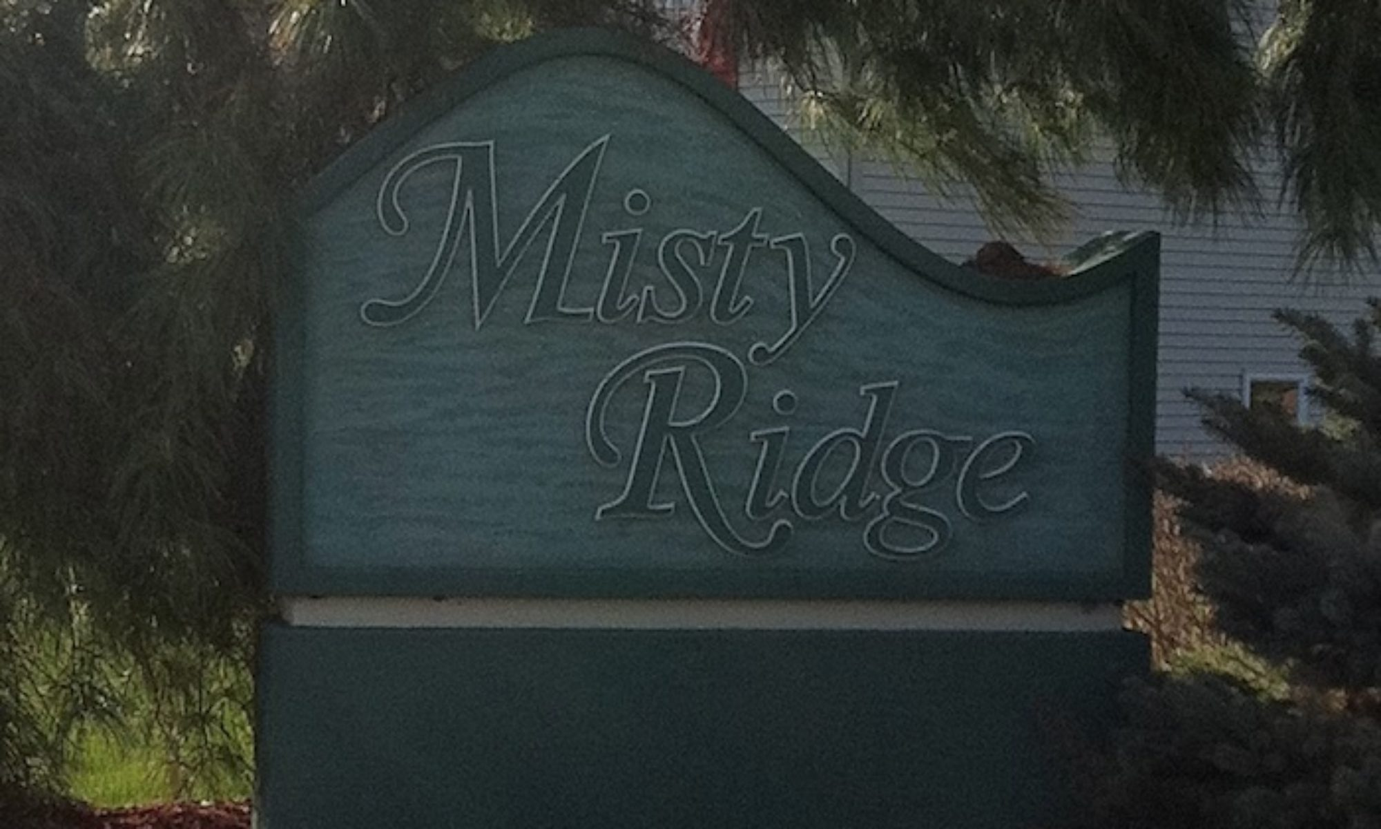 Misty Ridge Association